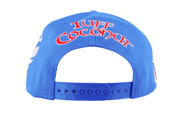 Samoa Snapback Hat Blue – Back View